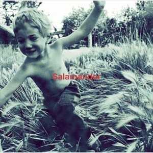ELLEGARDEN SalamanderのCDジャケット