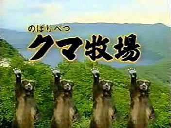 「のぼりべつクマ牧場」のNKB総選挙について調べてみた