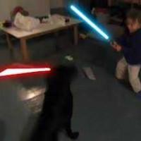 ライトセーバーを咥えた犬 vs ライトセーバーを持った少年