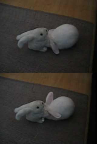 【動画】玩具のウサギが本物のウサギをモフモフしまくる動画がカワイイ!