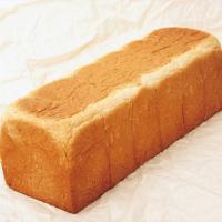 【画像】食パンみたいな犬が凄い!!