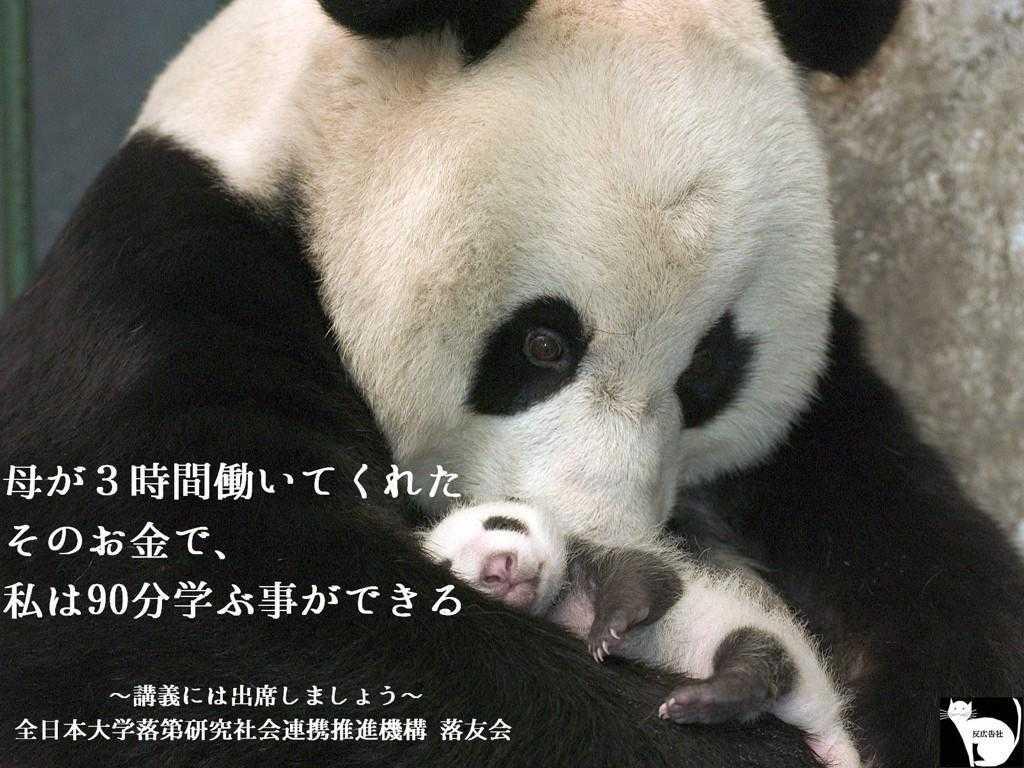 【反広告社】突き刺さるキャッチコピー「留年防止」用の広告