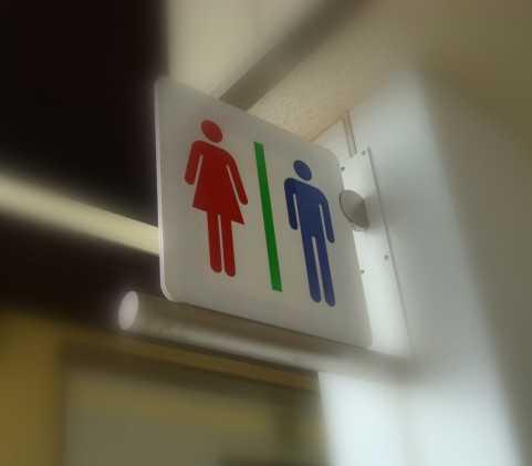 【診断】男性的な脳か女性的な脳か診断できるサイト「男脳女脳診断」