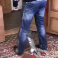 【動画】「いやや!!行かんといて!!」必死に脚にしがみつく猫がカワイイ!