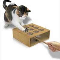 """猫用アナログもぐら叩き・・・もとい""""ねずみ叩き""""「Cat Whack a Mole」"""