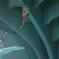 【動画】謎のクオリティwww何故かキリンが次々と高飛び台からプールにダイブする動画が凄い