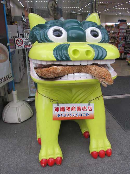 【Tumblr】旅する「ウツボ」の写真がカワイイ!「Katsuyuki Moray」さんをフォローしてみた