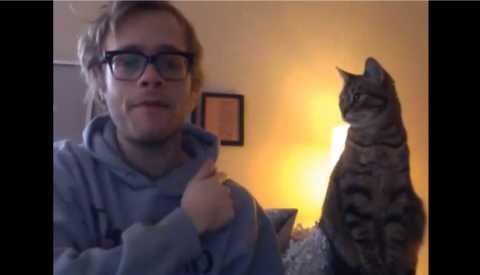【動画】猫のツッコミ「ニャ━━━━ンでやねん!(ビシッ!」