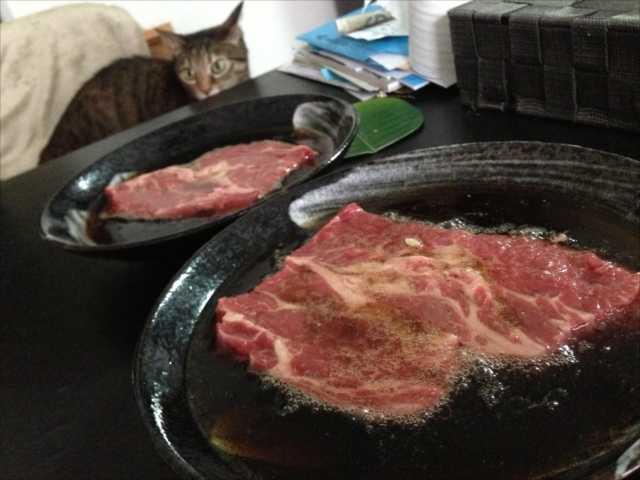 お肉をコーラに漬けると本当に柔らかくなるのか検証してみた