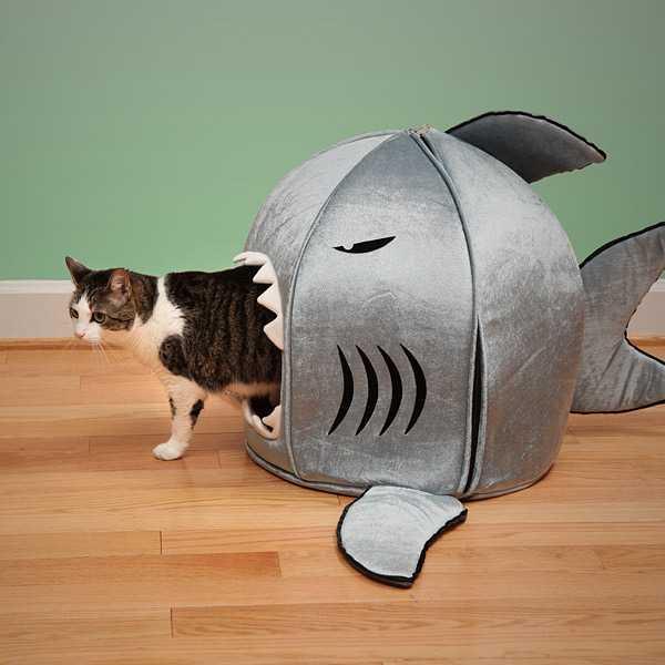うちの猫がサメに食べられてる!!ように見えるペットハウスがアホ可愛い