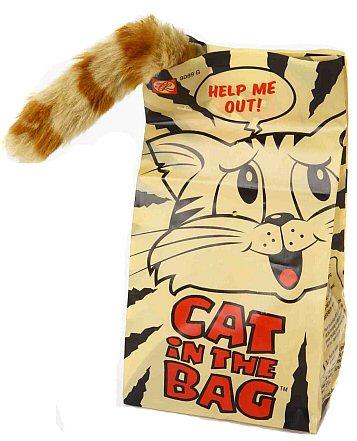 これ欲しい!猫が紙袋に入って暴れまくっているような動きをする猫用の玩具「Cat in the Bag」
