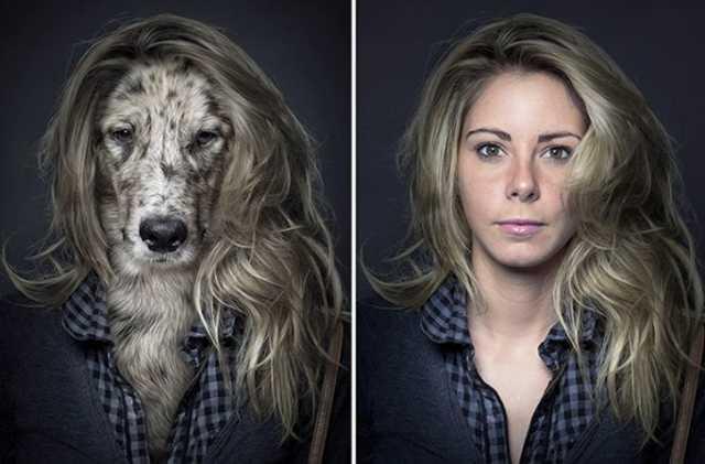 飼い犬は飼い主に似る?愛犬と飼い主を合成した写真集が面白い