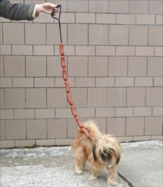 ソーセージみたいな犬用のリード「Sausage Link Dog Leash」