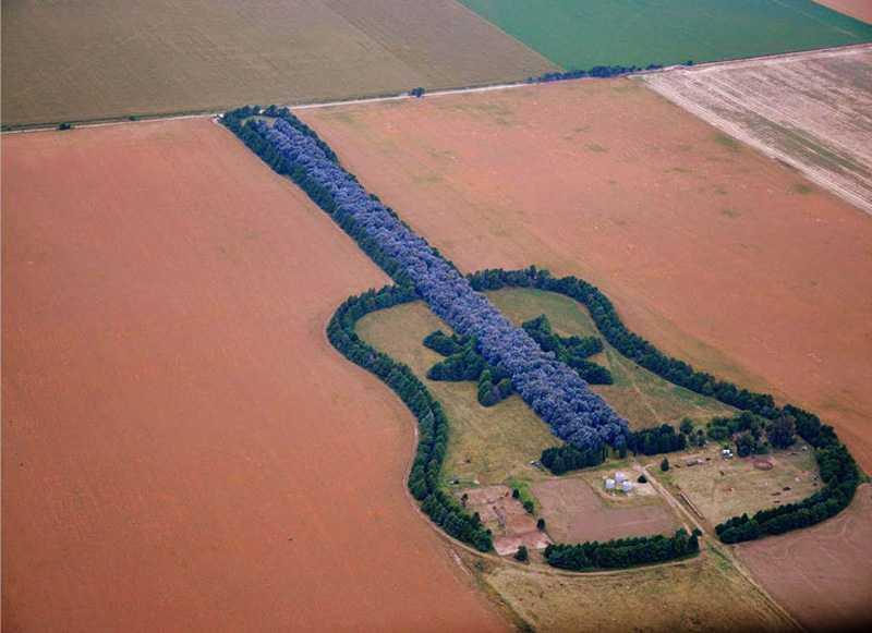 亡き妻の為に作った「空から見るとギター型に見える森」
