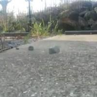 なにこれ凄い!Facebookでシェアされまくっていた「空中に浮く石」の動画