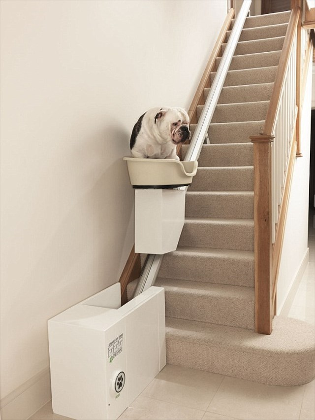 これは賛否両論ありそうだ・・・犬用のステアリフト「Dog Stairlift」