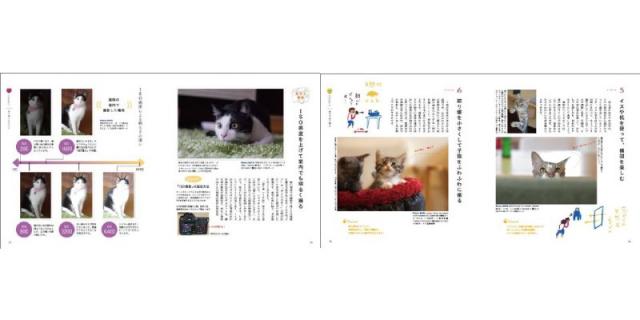 猫を可愛く撮る方法を解説した本「猫のかわいい撮り方手帖」