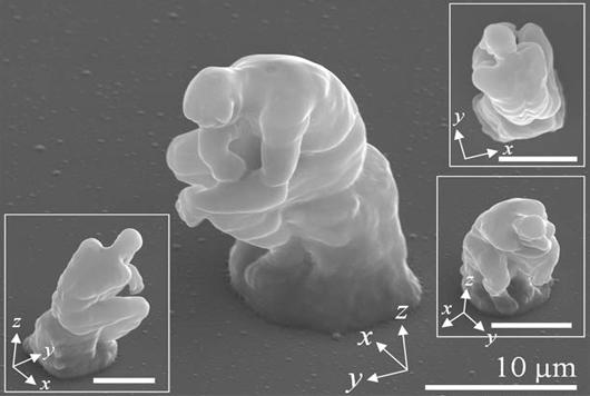 トイレみたいな細菌「Nano Toilet」が話題になっていたので調べてみたら色々出てきたw