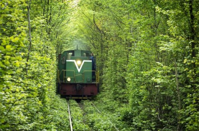 Twitterで話題のウクライナにある「愛のトンネル」について調べてみたよ【動画あり】