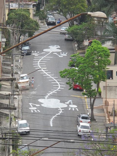 サンパウロの道路に描かれた巨大なアート、作者はストリートアーティスト「Tec」