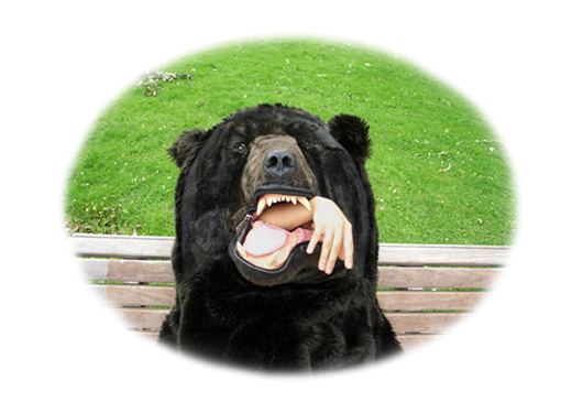 これSUGEEE!!!熊に丸呑みにされたように見える寝袋が凄い迫力!!