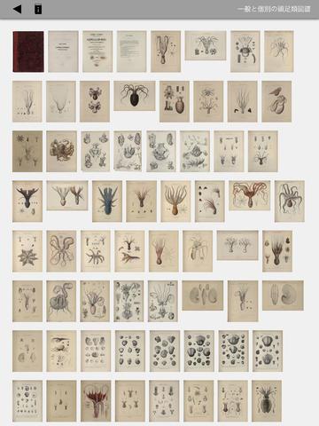 武蔵野美術大学図書館の所蔵する貴重書が無料で読めるアプリ「MAU M&L 博物図譜」