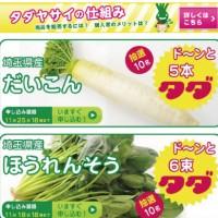 なんだこれー!!無料(タダ)で野菜が貰えるサイト「タダヤサイドットコム」とはw