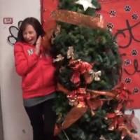 【動画】突然クリスマスツリーが動き出すドッキリ