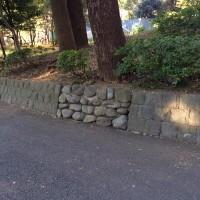 【小ネタ】「RPGだったら絶対なんかありそうな壁」がTwitterで話題に
