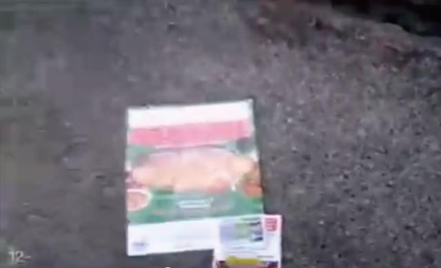 【動画】ポストに郵便物を入れようとすると中から突然何かが飛び出してきた!!