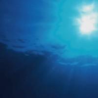【動画】超リラックスできる音楽+美麗水中映像
