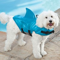 犬をサメに変えるライフジャケット「Shark Fin Dog Life Jacket」