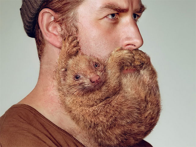 ヒゲ?動物!?顔にしがみつく動物のようなヒゲの写真が凄い!