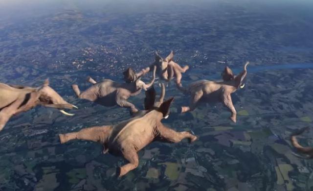 象がスカイダイビング!?動物が様々な曲芸に挑戦するフランスのCMが面白い!