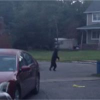 【動画】目を疑うほど人間っぽい動きで二足歩行で徘徊する熊