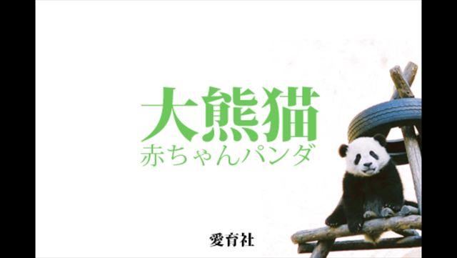 赤ちゃんパンダの写真を堪能できるiOSアプリ「赤ちゃんパンダ」で萌え死のう!