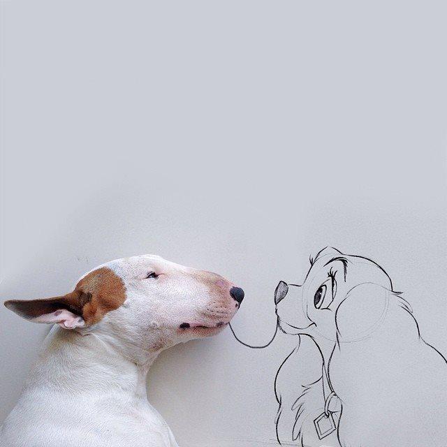 ペットのブルテリアとイラストを融合させたアートが可愛くて素敵だよ