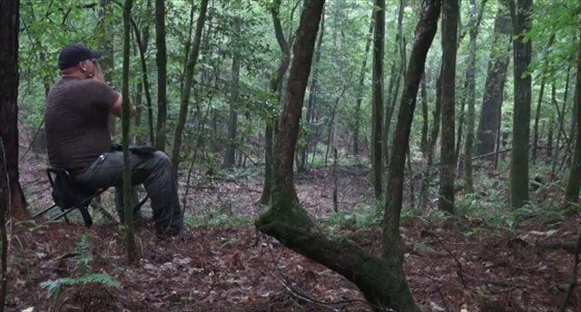 【動画】本物そっくりな鳴き真似でコヨーテと会話するハンター