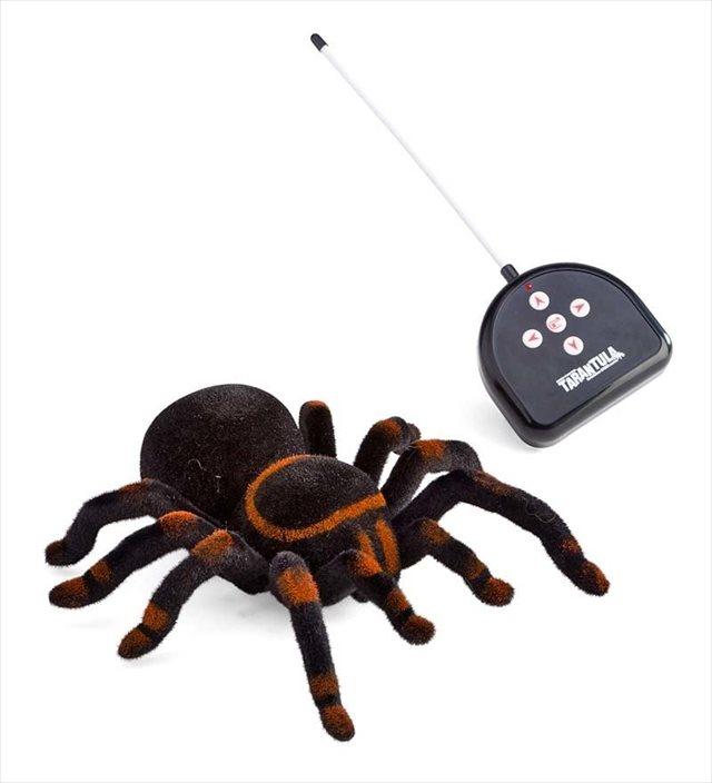 リモコンでカサカサ動かせるタランチュラのラジコン「Remote Control Tarantula」