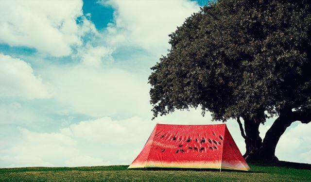 もの凄くスイカっぽいテント「WHAT A MELON」