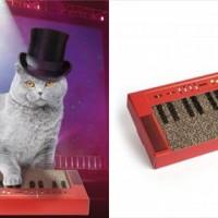 激しいプレイが期待できる!猫をキーボーディストに変える爪研ぎ『Cat Keyboard Scratcher』