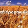 【今日の1曲】Telepopmusik – Breathe