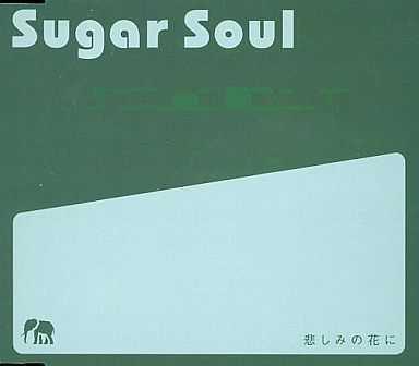 【今日の1曲】Sugar Soul - 悲しみの花に