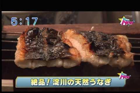 大阪の淀川で天然うなぎ!?「淀川産(よどがわもん)」