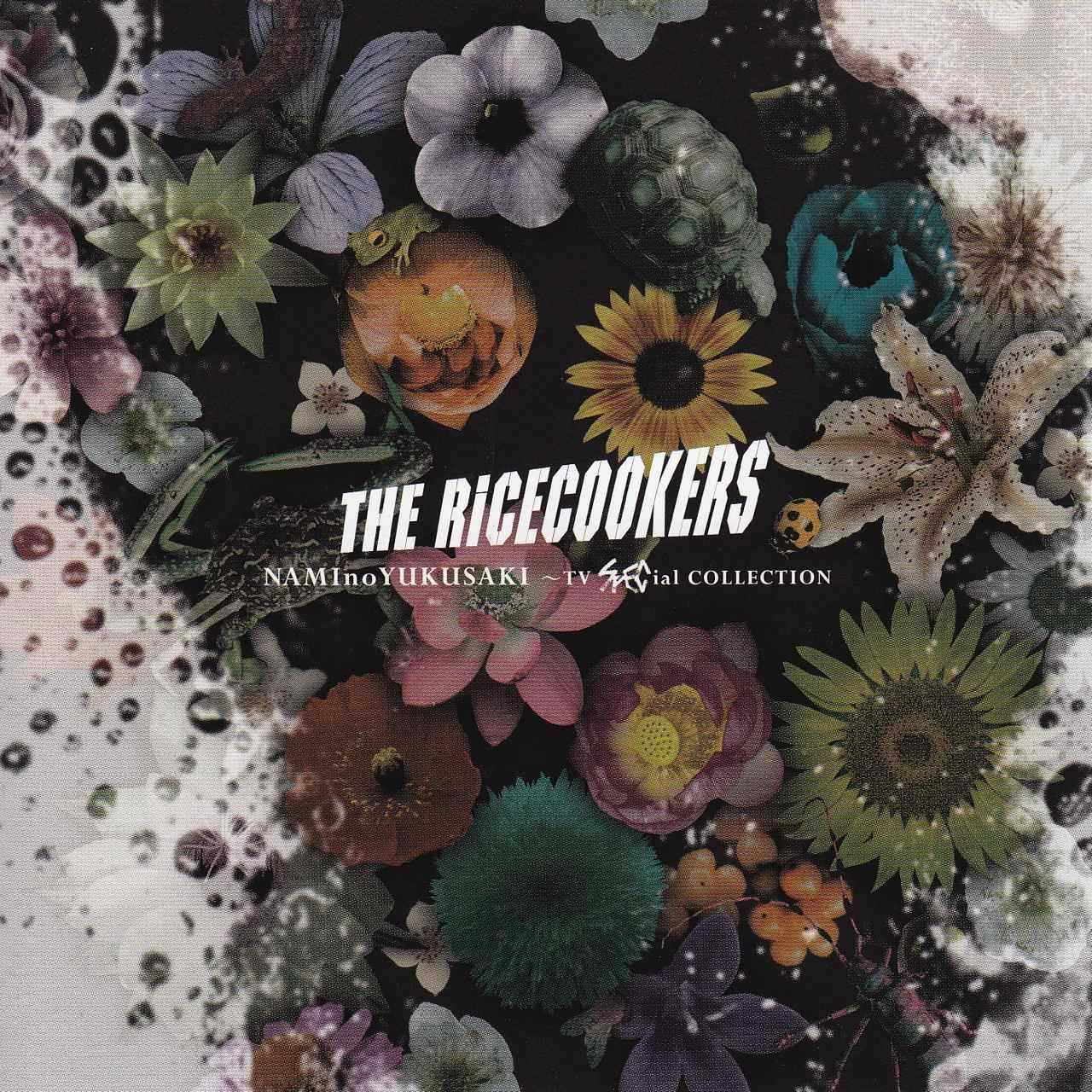 【今日の1曲】THE RICECOOKERS NAMInoYUKUSAKI〜天〜