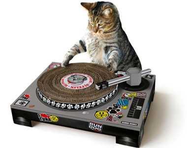 猫がDJになっちゃう!「ターンテーブル型爪研ぎ」