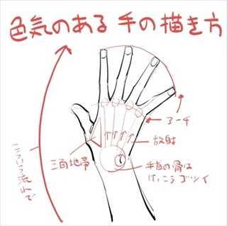 【画像】「色気のある手の描き方」がTumblrで話題