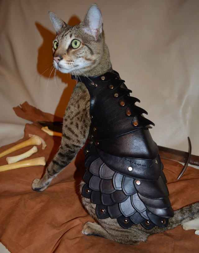 リアルにモンハンの「アイルー」になれる猫用アーマーがEstyで売ってたよ!!