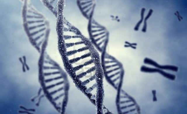 人種差別が細胞レベルで老化の原因になる可能性があることが判明