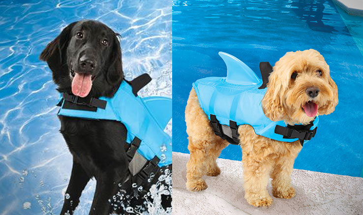 shark-fin-dog-life-jacket-1639